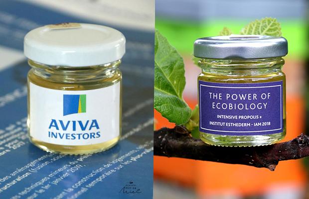 cadeau d'entreprise -  communication - petit pot de miel